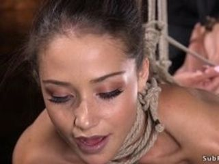 Black-haired cutie Avi enjoy with pinched nips and ballgag in gullet gets muff and bean massaged before in hog-tie muff romped with salami on a stick